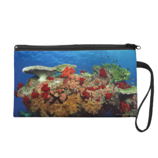Reef scenic of hard corals , soft corals wristlet purses