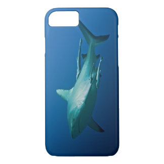 Reef Shark Great Barrier Reef Coral Sea iPhone 7 Case