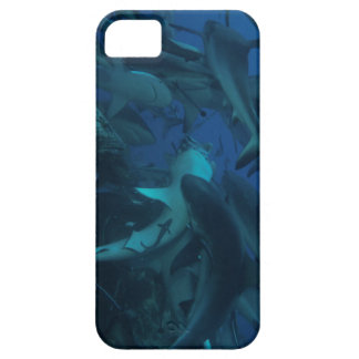 Reef Shark on the Great Barrier Reef iPhone 5 Case