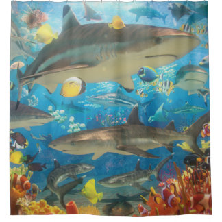 Reef Sharks Shower Curtain