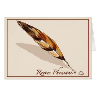 Reeves pheasant - Card