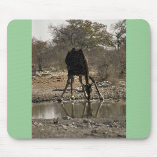 Reflected image of a drinking giraffe mousepad