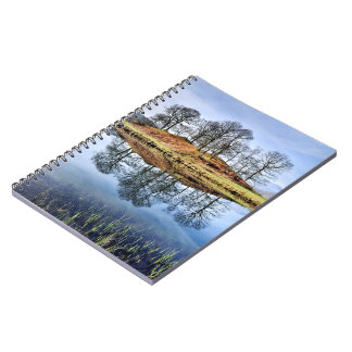 Reflected trees Notebook