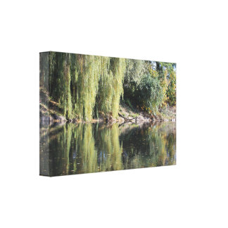 Reflected Willow Trees In River Canvas Print