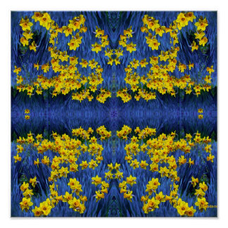 Reflecting Daffodils Poster