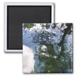 Reflection in Sturgeon Pond Magnet