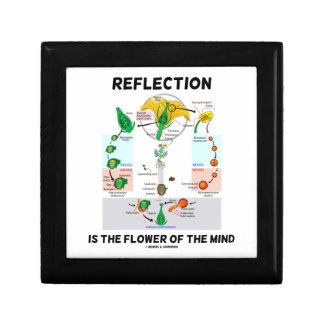 Reflection Is The Flower Of The Mind (Angiosperm) Small Square Gift Box