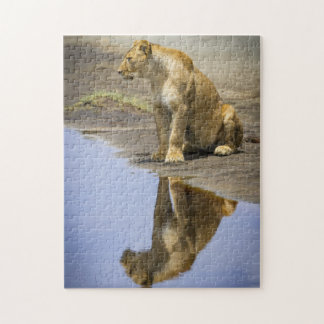 Reflection of a Lioness Puzzle