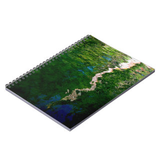Reflection of trees in water notebook