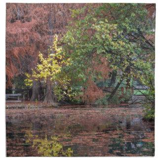 reflection on lake in autumn napkin