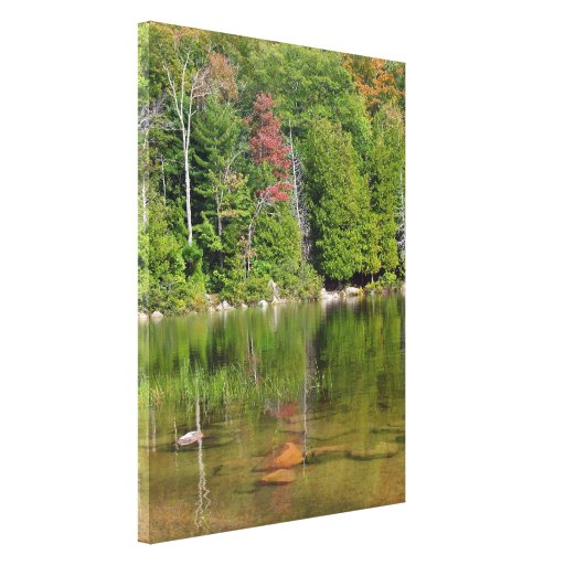 Reflections Canvas Prints