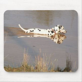 Reflections in the waterhole mouse pad