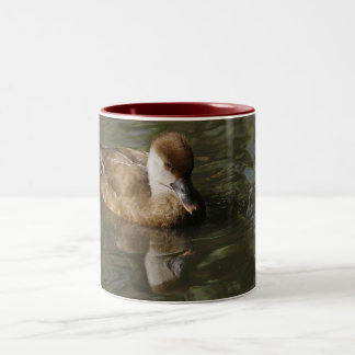 Reflections of a Ducl Two-Tone Coffee Mug