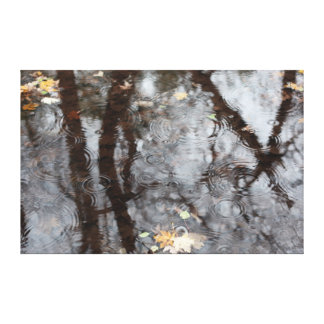 Reflections of Branches with Autumn Leaves Gallery Wrap Canvas