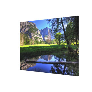 Reflections of Falls Canvas Print