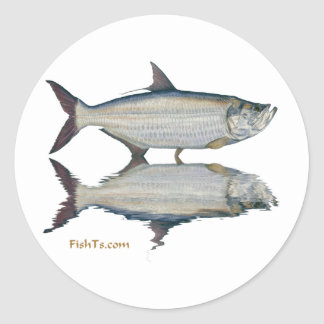 Reflections of fish round sticker