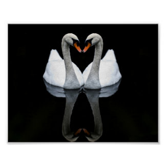 Reflections of Love Heart Shape White Swans Print