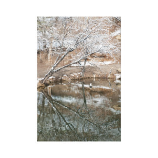 Reflections of Winter Canvas Print