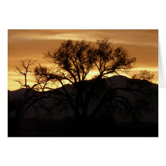 Reflections On A Tree - poem Cards