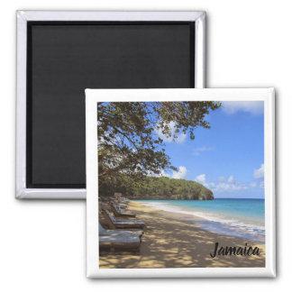 refrigerator magnet; Jamaica beach souvenir Magnet