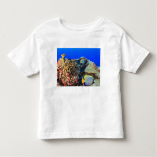 Regal Angelfish Pygoplites diacanthus), Toddler T-Shirt
