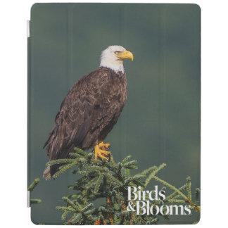 Regal Bald Eagle iPad Cover