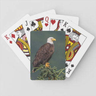 Regal Bald Eagle Playing Cards