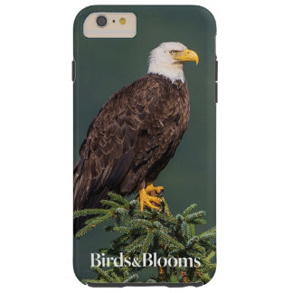 Regal Bald Eagle Tough iPhone 6 Plus Case