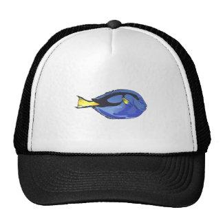 REGAL BLUE TANG CAP