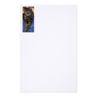 """Regal Dave 5.5"""" x 8.5"""" Stationery"""