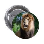 Regal Lion Button