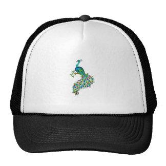 REGAL PEACOCK CAP