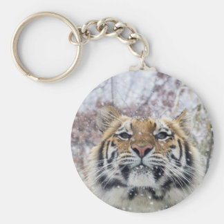 Regal Tiger in Snow Basic Round Button Key Ring