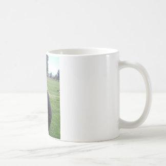 regina coffee mug