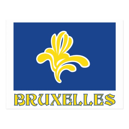 Region of Brussels Flag with Name (French) Postcard