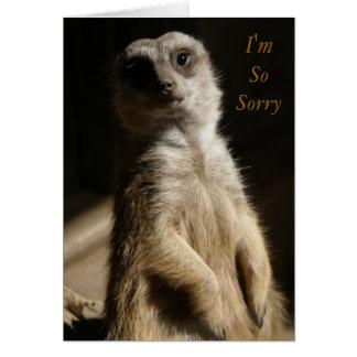 Regret - I'm SoSorry Apology or Sympathy Cute Card