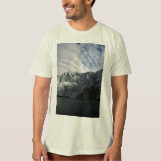 Reid Glacier T-Shirt