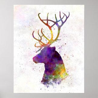Reindeer 01 in watercolor poster
