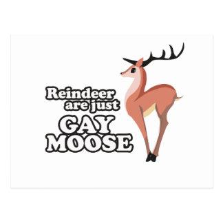 REINDEER ARE JUST GAY MOOSE -.png Postcard