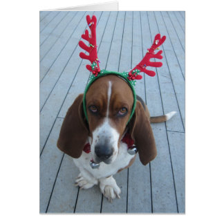 Reindeer Basset Holiday Christmas Card