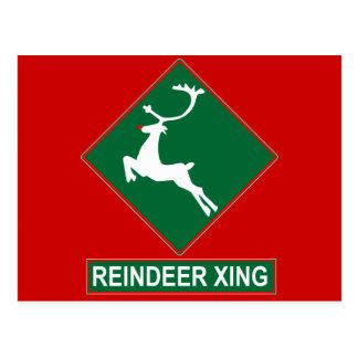 Reindeer Crossing (X-mas Colors) Postcard
