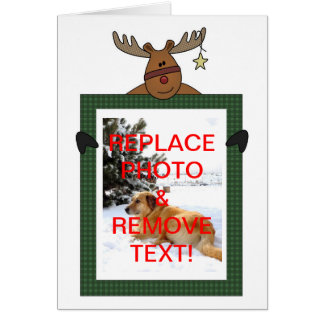 Reindeer Framed Christmas Photo Greeting Card