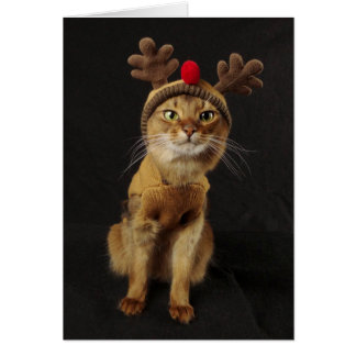 Reindeer Games Somali Cat Holiday Card
