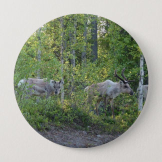 Reindeer in Lapland button