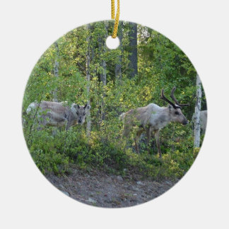 Reindeer in Lapland ornament