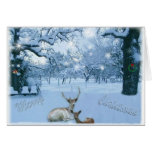 Reindeer in Snow Card