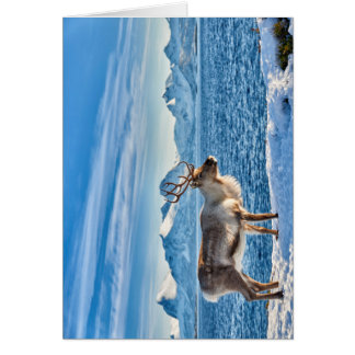 Reindeer in snow covered landscape at sea card