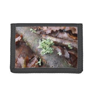 Reindeer Moss Lichen On Tree Branch Tri-fold Wallet