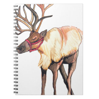 Reindeer Notebook