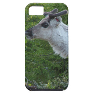 Reindeer Photo iPhone 5 Case-Mate